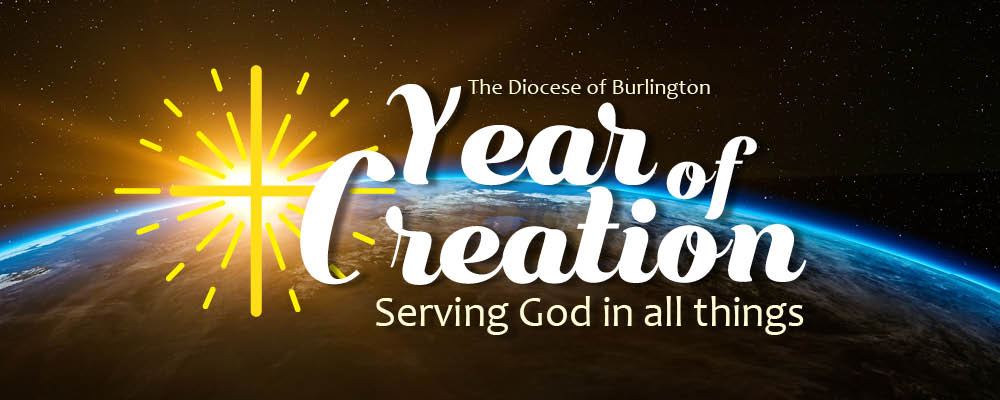 "Catholic Diocese to observe 2017 as ""Year of Creation"""